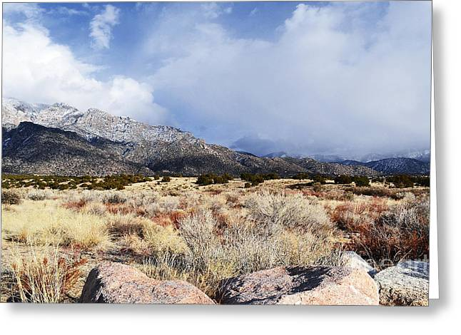 Framed Winter Snow Photograph Greeting Cards - Sandia December Greeting Card by Andrea Hazel Ihlefeld