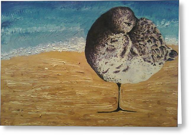Local Mixed Media Greeting Cards - Sandpiper  Greeting Card by Carlene Schlebus