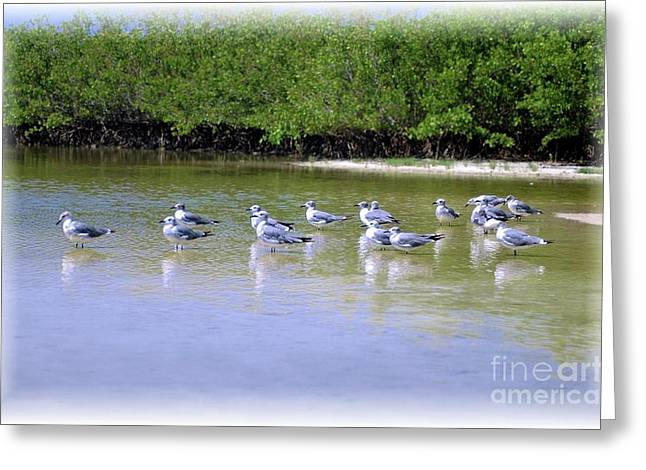 Fort Meyers Greeting Cards - Sandpiper Party Greeting Card by Kathleen Struckle