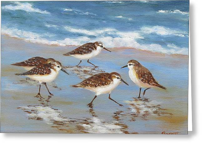 Sandpiper Greeting Cards - Sandpipers Greeting Card by Barrett Edwards