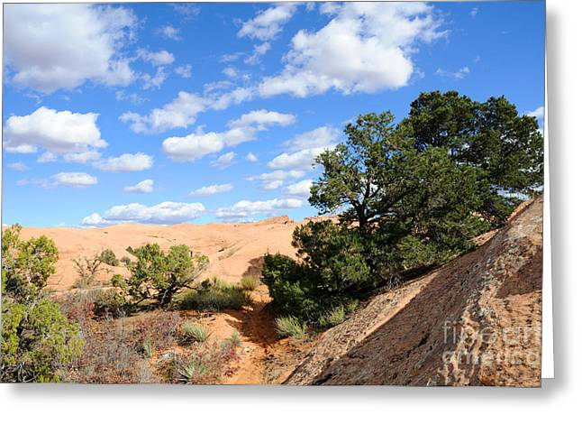 Slickrock Greeting Cards - Sandstone Sky Greeting Card by Gary Whitton