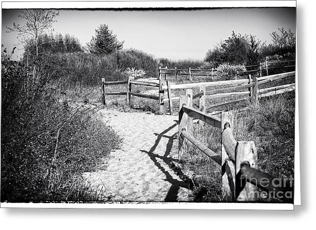 Sand Fences Greeting Cards - Sandy Hook Maze Greeting Card by John Rizzuto