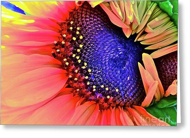 Punch Digital Art Greeting Cards - Sangria Greeting Card by Gwyn Newcombe