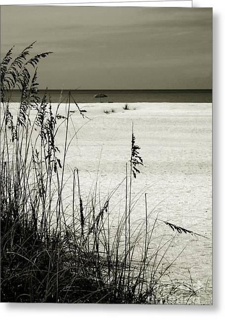 Sanibel Island Florida Greeting Card by Susanne Van Hulst