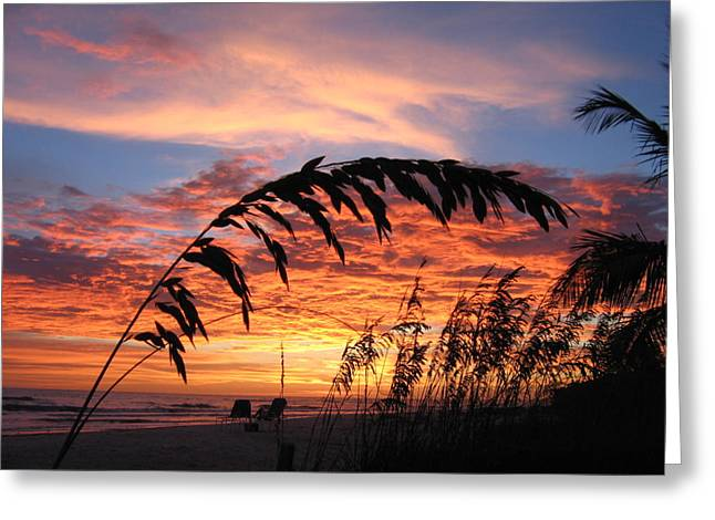 """sunset Photographs"" Greeting Cards - Sanibel Island Sunset Greeting Card by Nick Flavin"