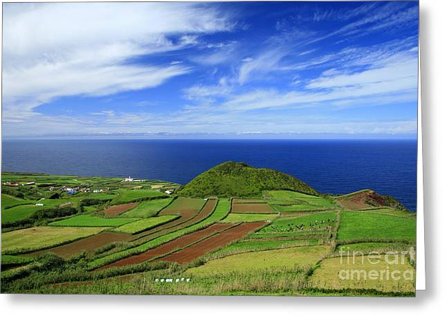 Lush Colors Greeting Cards - Sao Miguel - Azores islands Greeting Card by Gaspar Avila