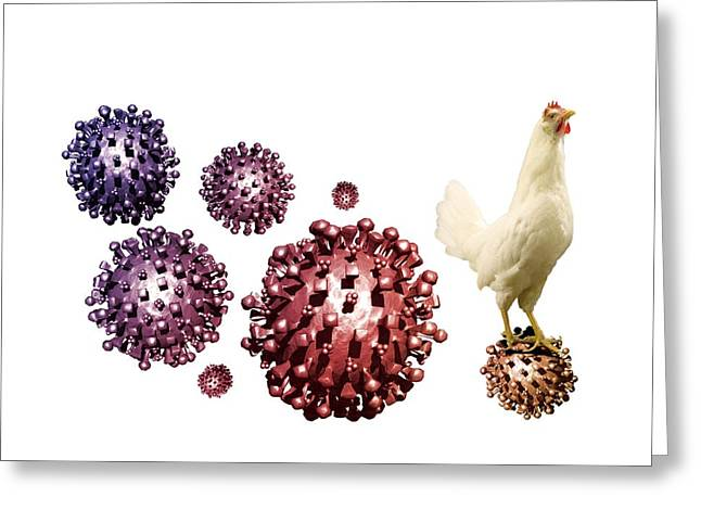 Sar Greeting Cards - Sars Virus And Chicken, Artwork Greeting Card by Victor Habbick Visions