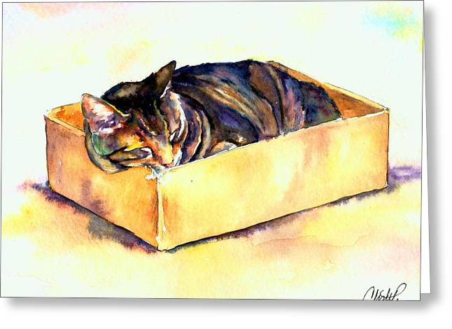 Cat Sleeping Greeting Cards - Sassy Sleeping Greeting Card by Christy  Freeman