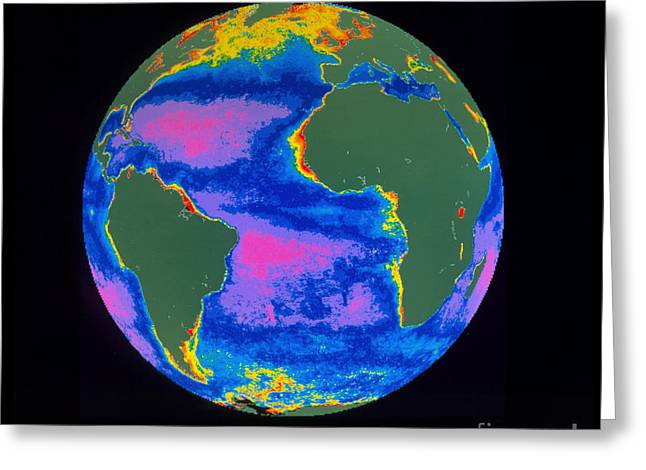 Czcs Imagery Greeting Cards - Satellite Image Of The Atlantic Ocean Greeting Card by Dr. Gene Feldman, NASA Goddard Space Flight Center