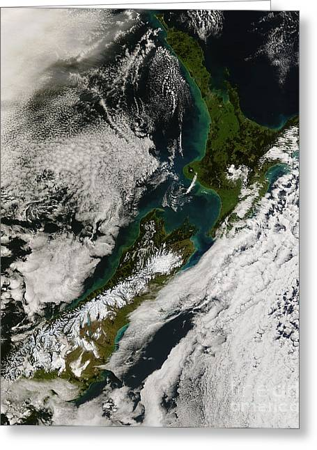 Recently Sold -  - Phytoplankton Greeting Cards - Satellite View Of New Zealand Greeting Card by Stocktrek Images