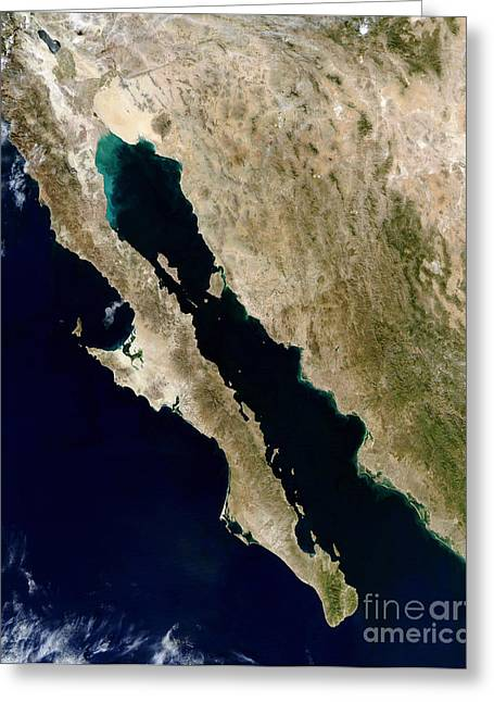 Land Feature Greeting Cards - Satellite View Of The Gulf Of California Greeting Card by Stocktrek Images