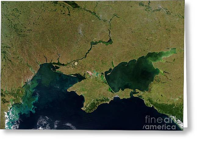 Recently Sold -  - Phytoplankton Greeting Cards - Satellite View Of The Ukraine Coast Greeting Card by Stocktrek Images