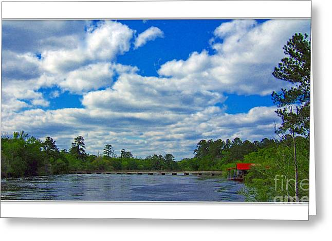 River Flooding Greeting Cards - Satilla River Greeting Card by Diana  Tyson