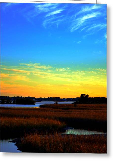 Cedar Key Greeting Cards - Saturated In The Salts Greeting Card by Tammy  Shiver