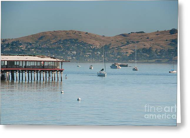 Sausalito Digital Greeting Cards - Sausalito Harbour Greeting Card by Carol Ailles
