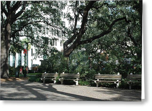 Savannah Dreamy Photography Greeting Cards - Savannah Historical District Park Benches and Trees Greeting Card by Kathy Fornal