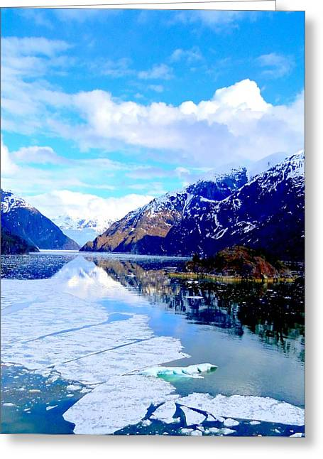 Floating Ice Sheet Greeting Cards - Sawyer Glacier 3 Greeting Card by Randall Weidner
