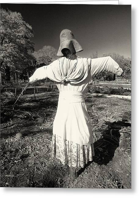 Historic Site Greeting Cards - Scarecrow in the Garden Greeting Card by George Oze
