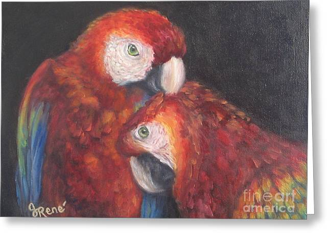 Macaw Art Print Greeting Cards - Scarlet Macaws  Greeting Card by Gayle Rene