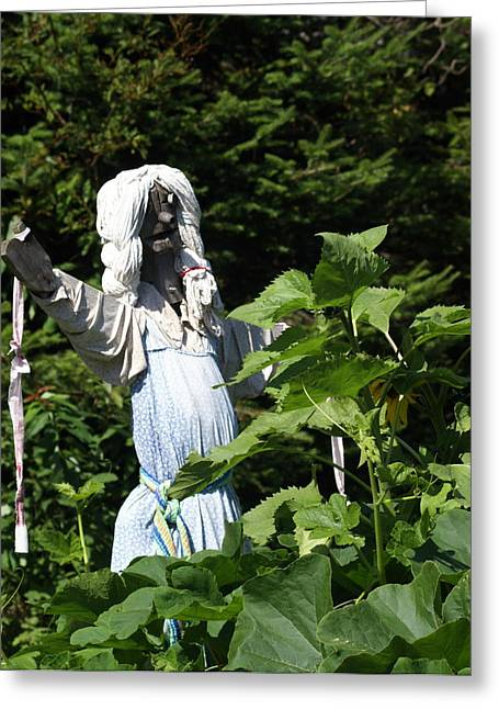 Marty Koch Greeting Cards - Scary Scarecrow Greeting Card by Marty Koch