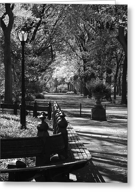 Green And Yellow Greeting Cards - SCENES FROM CENTRAL PARK in BLACK AND WHITE Greeting Card by Rob Hans