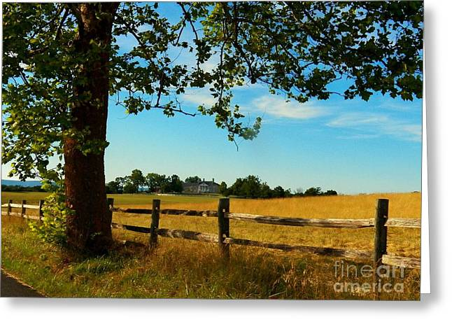 Northern Virginia Greeting Cards - Scenic Belle Grove Plantation Greeting Card by Joyce Kimble Smith