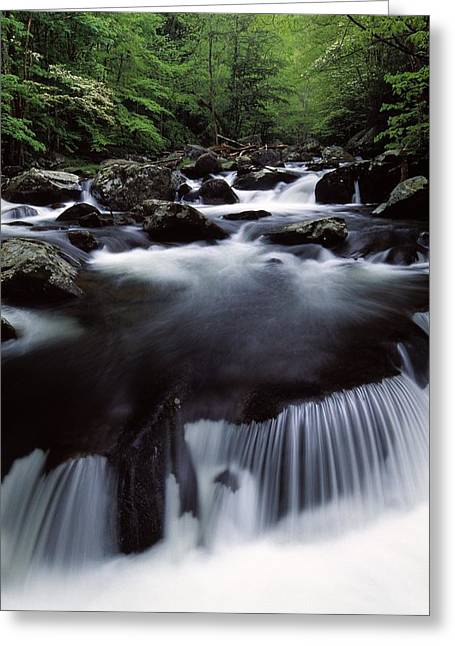 Scenic Creek, Tennessee, Usa Greeting Card by Natural Selection Robert Cable