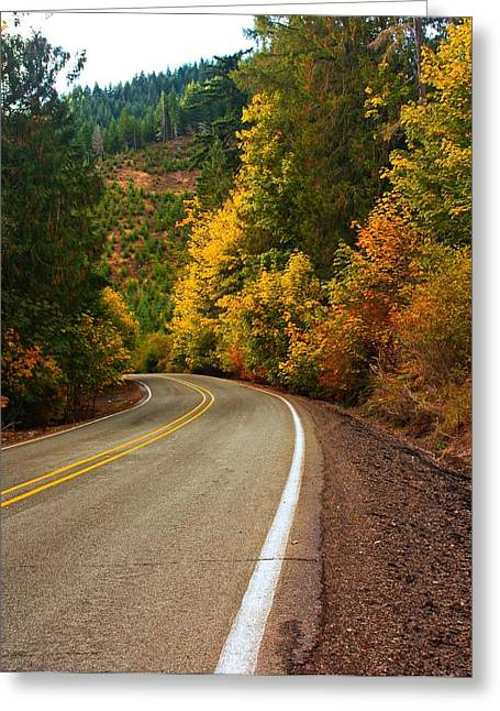 Scenic Drive Digital Greeting Cards - Scenic Drive Greeting Card by Tyra  OBryant