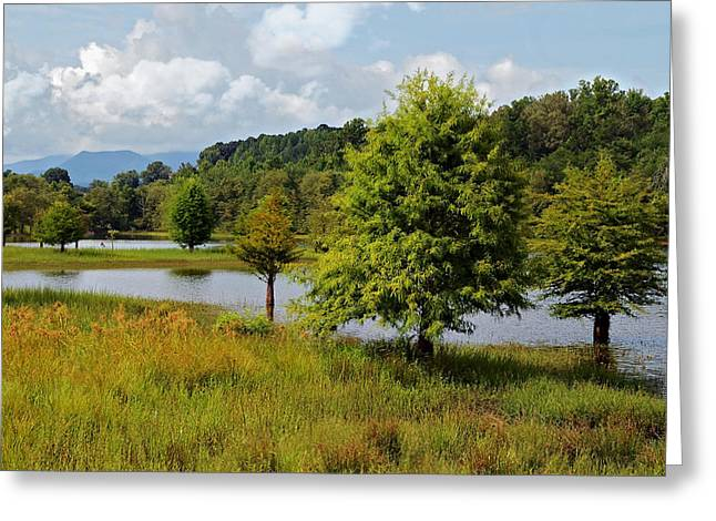 Scenic Lake With Mountains Greeting Card by Susan Leggett