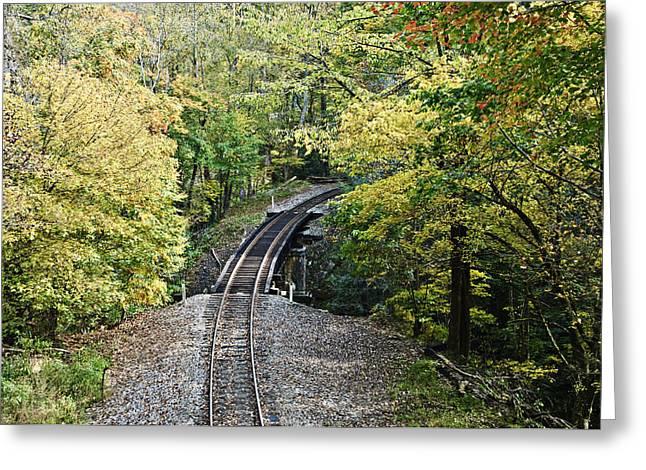 Scenic Railway Tracks Greeting Card by Susan Leggett