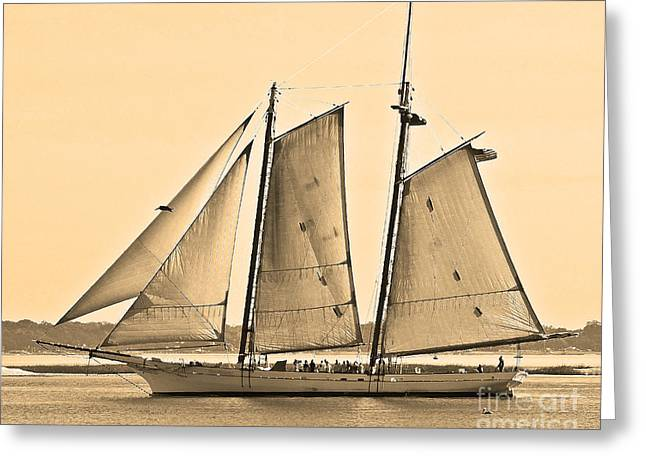 Sailboat Photos Greeting Cards - Scenic Schooner - Sepia Greeting Card by Al Powell Photography USA