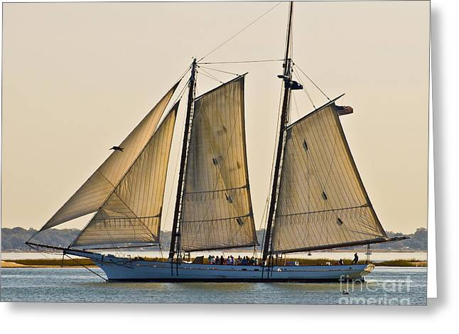 Sailboat Photos Greeting Cards - Scenic Schooner Greeting Card by Al Powell Photography USA