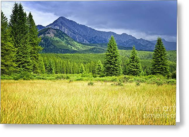 Alberta Landscape Greeting Cards - Scenic view in Canadian Rockies Greeting Card by Elena Elisseeva