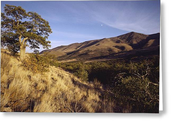 Scenic View Of The Yakima Valley Greeting Card by Sisse Brimberg
