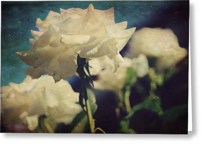 Scent Greeting Card by Laurie Search