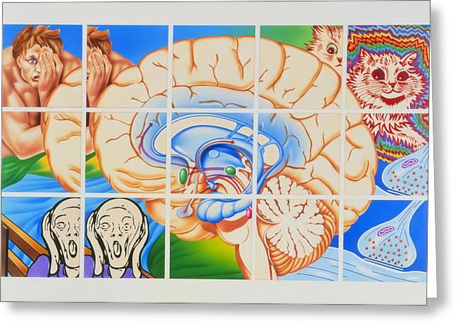 The Scream Greeting Cards - Schizophrenia: Artwork Of Brain And Paintings Greeting Card by John Bavosi