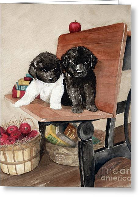 Newfoundland Puppy Greeting Cards - School Days Greeting Card by Nancy Patterson