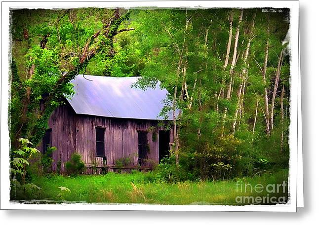 Dappled Light Greeting Cards - Schoolhouse in Lost Valley Greeting Card by Judi Bagwell