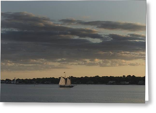 Schooner Greeting Cards - Schooner Mystic Whaler Sailing Greeting Card by Todd Gipstein