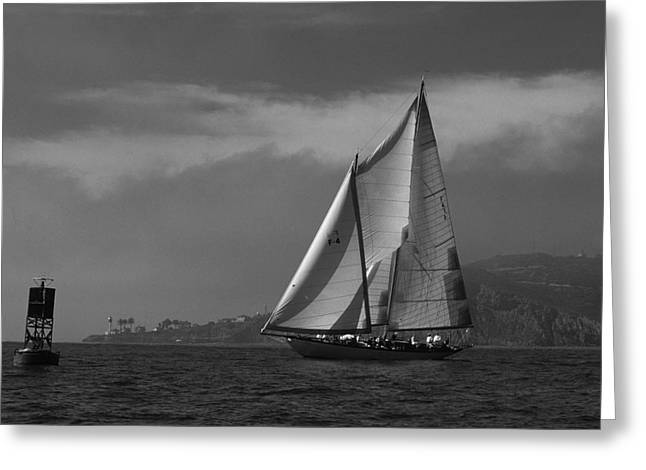Sail Board Greeting Cards - Schooner off Point Loma Greeting Card by David Shuler