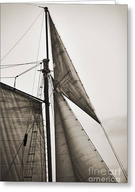 Historic Schooner Greeting Cards - Schooner Pride Tall Ship Yankee Sail Charleston SC Greeting Card by Dustin K Ryan