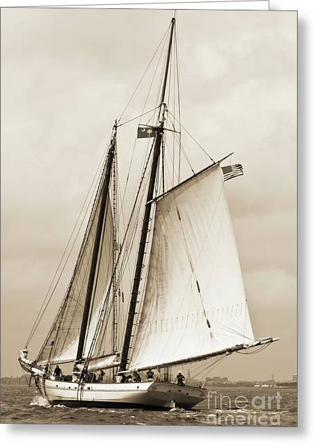 Schooner Greeting Cards - Schooner Sailboat Spirit of South Carolina Sailing Greeting Card by Dustin K Ryan