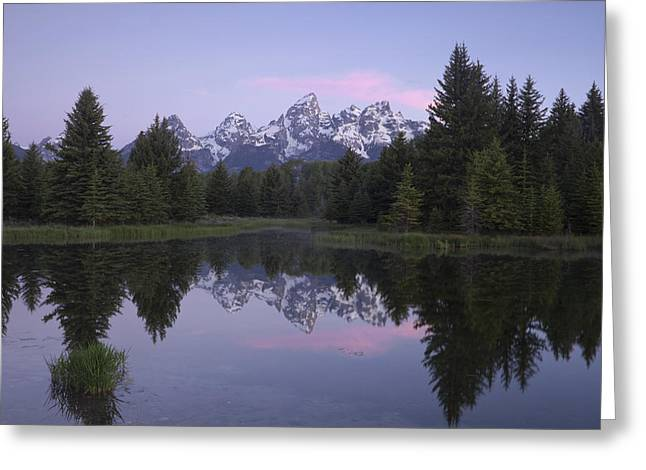 Pond Grand Tetons Greeting Cards - Schwabacher Greeting Card by Andrew Soundarajan
