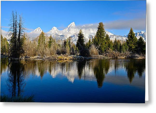 Landscape Photography Greeting Cards - Schwabacher Landing Greeting Card by Greg Norrell