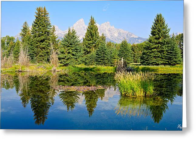 Schwabacher Landing Still Waters Greeting Card by Greg Norrell