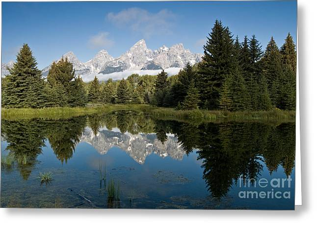 Snake Hole Greeting Cards - Schwabacker Landing Grand Tetons Greeting Card by Jim Chamberlain