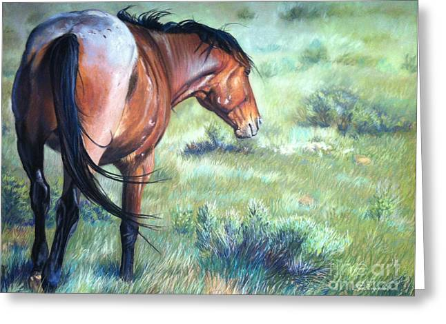Wild Horse Pastels Greeting Cards - Scorn Greeting Card by Deb LaFogg-Docherty