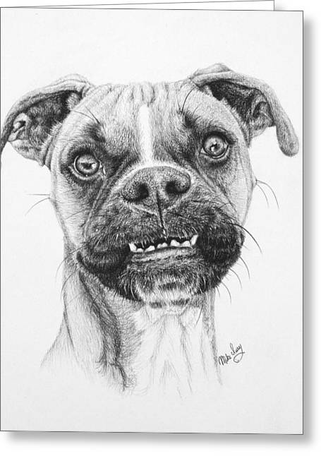 Mike Ivey Greeting Cards - Scout Greeting Card by Mike Ivey