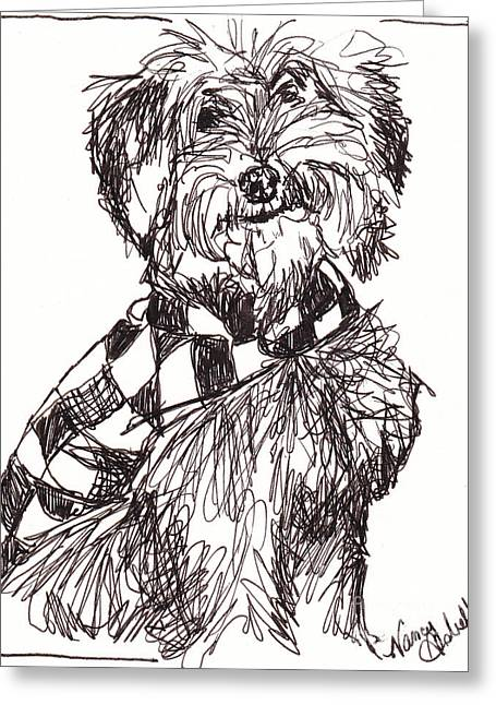 Rescue Drawings Greeting Cards - Scruffy The Rescue Dog Greeting Card by Michele Hollister - for Nancy Asbell