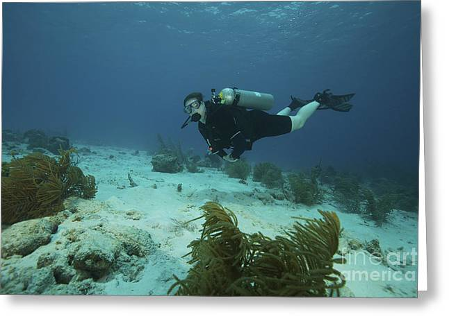 Oxygen Tank Greeting Cards - Scuba Diver Swimming Underwater Greeting Card by Terry Moore